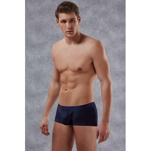 Adonis Boxer - blau
